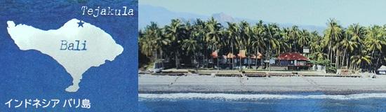 インドネシアバリ島の地図 塩の聖地テジャクラの風景