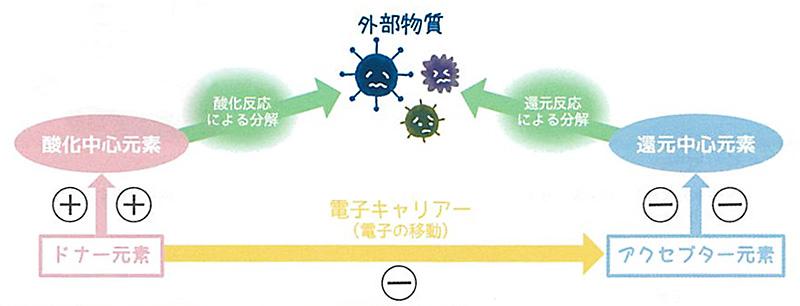 CT触媒 エクリア 消臭アーティフィシャルグリーン 空気清浄 フェイク KISHIMA